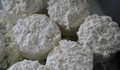 CURSO: Iniciación a la elaboración de lácteos