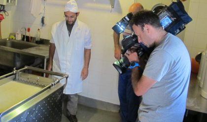 Tercer concurso europeo de vídeos sobre queserías de campo y artesanas
