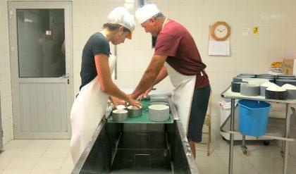 1er curso para implantación de la Guía Europea de Prácticas Correctas de Higiene en la producción de quesos y lácteos artesanos